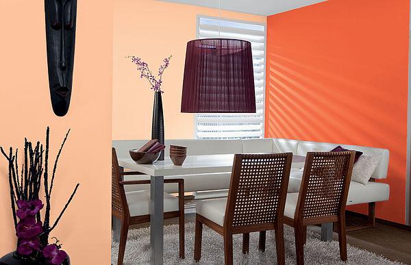 Alpina Color Happy Orange - Alpina Farben