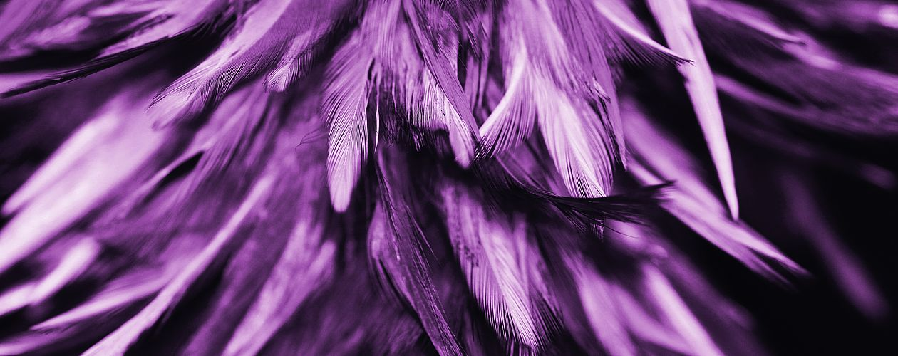 Violett ist die geheimnisvollste aller Farben – sie vereint das irdische Rot mit dem himmlischen Blau.